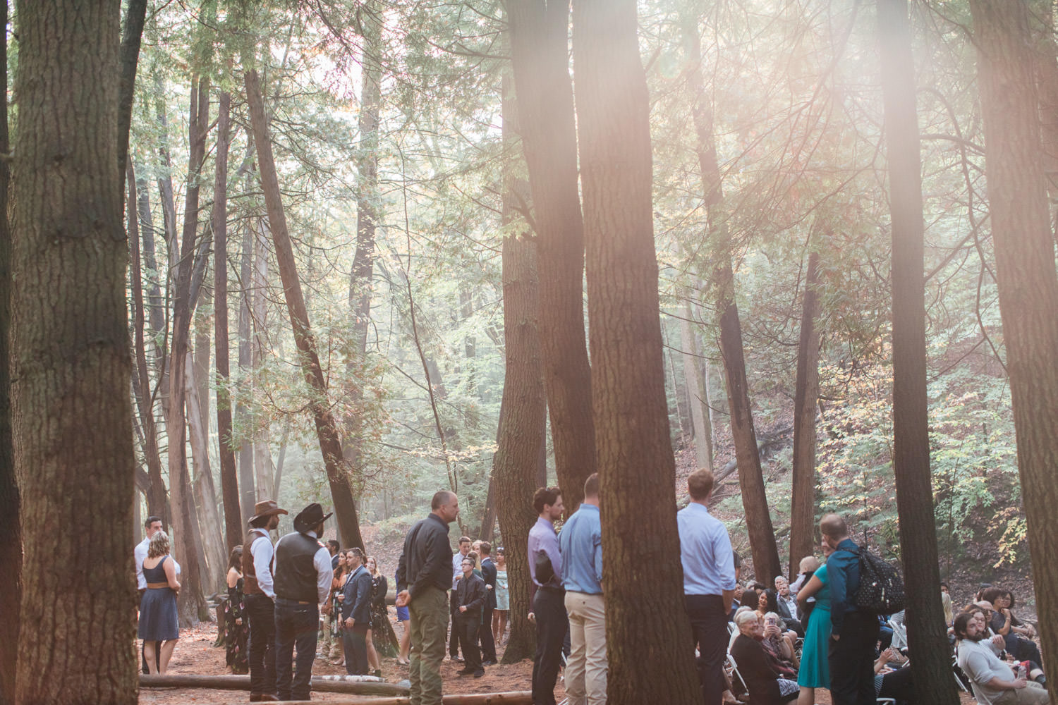 Ganaraska Forest Wedding